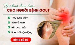 Bài thuốc thảo dược cho người bệnh gout: Tiêu sưng viêm, xóa sổ tophi, phục hồi vận động